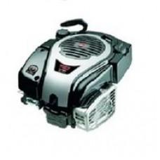 Бензиновый двигатель Briggs&Stratton 750 SERIES DOV® Модель 1006020177H8YY7001
